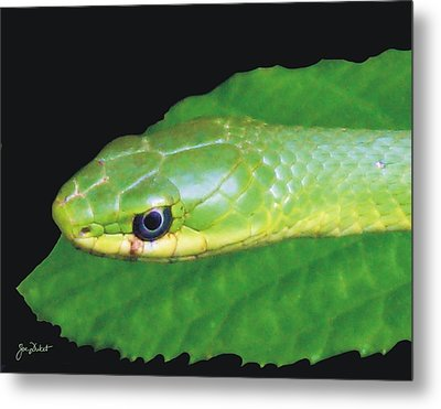 Rough Green Snake Metal Print