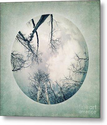 round treetops I Metal Print by Priska Wettstein