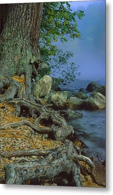 Metal Print featuring the photograph Route Of The Voyageurs by Gary Hall