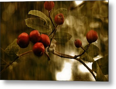Metal Print featuring the mixed media  Berry Nice by Fine Art By Andrew David