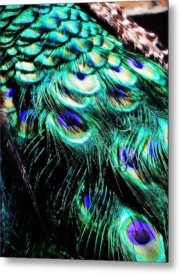 Royal Cloak Metal Print by Leah Moore