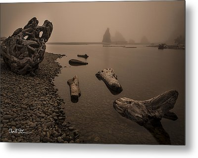 Ruby Beach Fog Metal Print