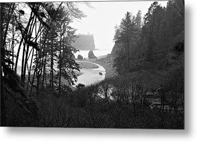 Ruby Beach In The Winter In Black And White Metal Print by Jeanette C Landstrom
