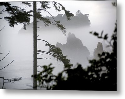Ruby Beach Washington State Metal Print