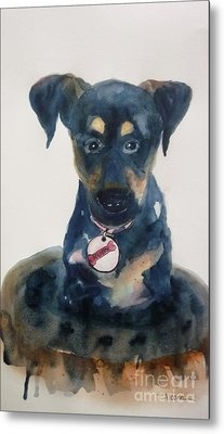 Ruby - Original Sold Metal Print by Therese Alcorn