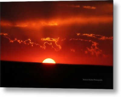 Ruby Red Metal Print by Michele Richter