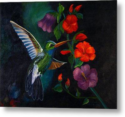 Rubythroated Humming Bird And Hibiscus Metal Print by J Cheyenne Howell
