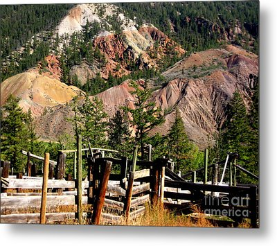Rugged Beauty Metal Print by Kathy Bassett
