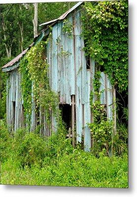 Ruin In The Woods Metal Print by David Nichols