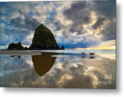 Running Free - Dogs Running In Beautiful Cannon Beach. Metal Print by Jamie Pham