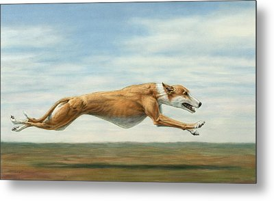Running Free Metal Print by James W Johnson