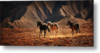 Running Free Metal Print by Priscilla Burgers
