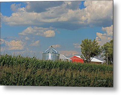 Rural Indiana Scene - Adams County Metal Print by Suzanne Gaff