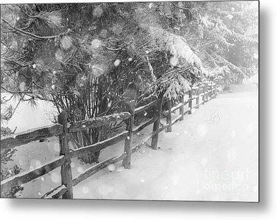 Rural Winter Scene With Fence Metal Print by Elena Elisseeva