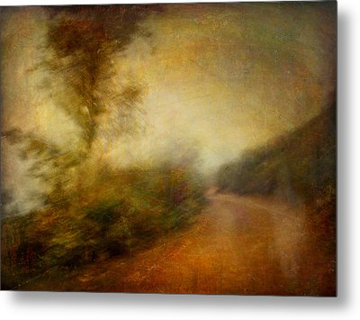 Metal Print featuring the photograph Ruralscape #11 - Rain And Dust by Alfredo Gonzalez