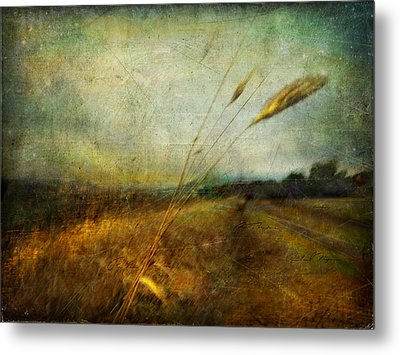 Metal Print featuring the photograph Ruralscape #19. The Victory Of Silence by Alfredo Gonzalez