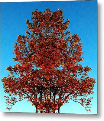 Metal Print featuring the photograph Rust And Sky 2 - Abstract Art Photo by Marianne Dow