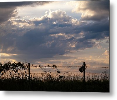 Metal Print featuring the photograph Rusted Bucket by Wayne Meyer