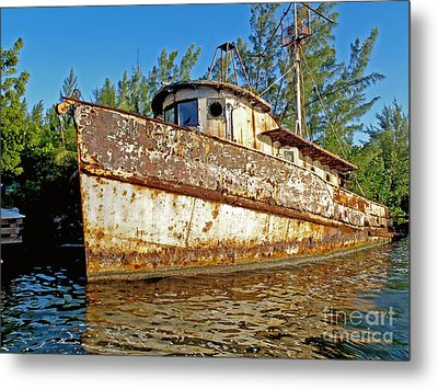 Rustic Metal Print by Carey Chen
