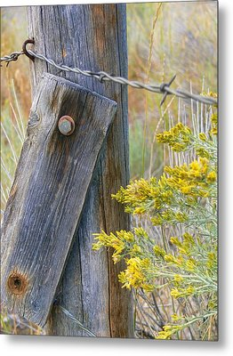 Rustic Fence And Wild Flowers Montana Metal Print by Jennie Marie Schell