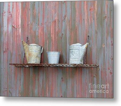 Rustic Garden Shelf Metal Print by Ann Horn