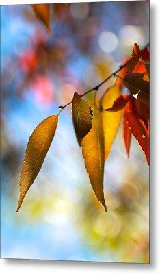 Rustling Leaves Metal Print by Tracy Male
