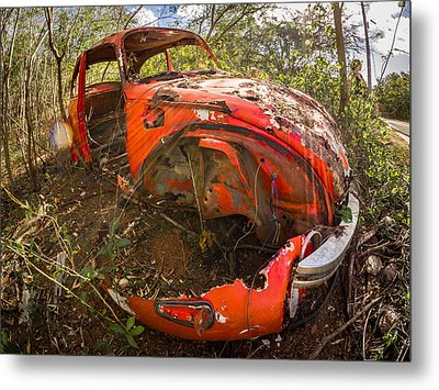 Rusty Beetle Metal Print by Carl Engman