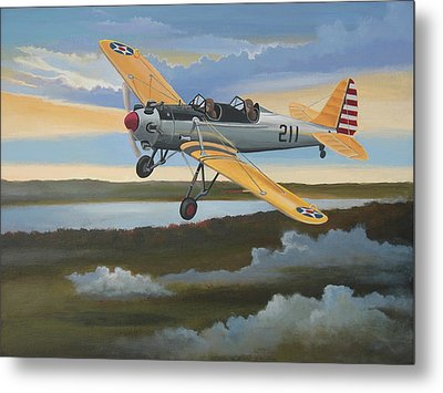 Ryan Pt-22 Recruit Metal Print by Stuart Swartz