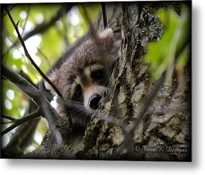 Sad Eyes Metal Print by Terri K Designs