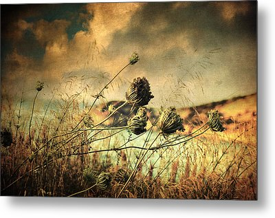 Sad Song Of The Wind Metal Print
