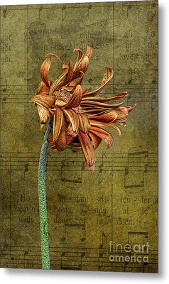 Metal Print featuring the digital art Sad Song by Shirley Mangini