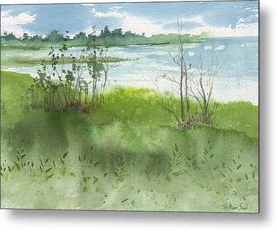 Saginaw Bay 7-26-13 Metal Print by Sean Seal
