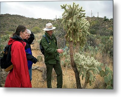 Saguaro National Park Tourism Metal Print by Jim West