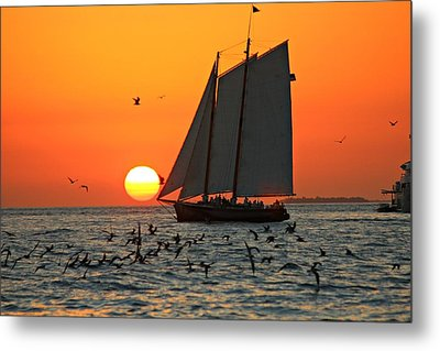 Sail Into The Sunset Metal Print by Jo Sheehan