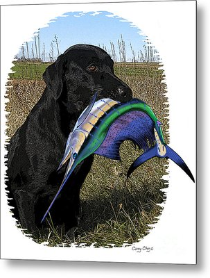Sail Retriever  Metal Print