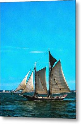 Sailboat In The Bay Metal Print