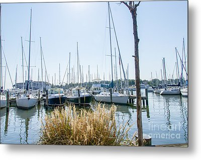 Sailboats On Back Creek Metal Print by Charles Kraus