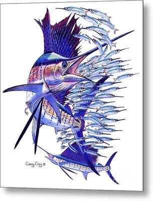 Sailfish Ballyhoo Metal Print by Carey Chen