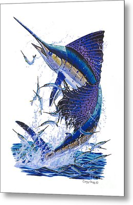 Sailfish Metal Print by Carey Chen