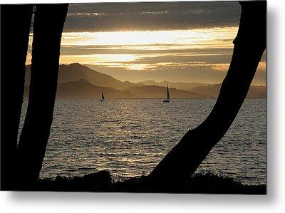 Sailing At Sunset On The Bay Metal Print by Robert Woodward