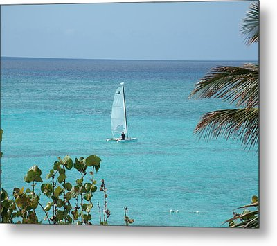Metal Print featuring the photograph Sailing by David S Reynolds