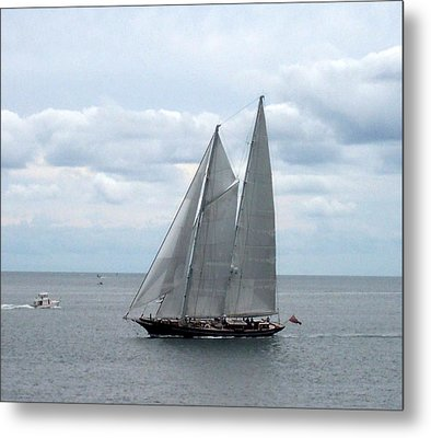 Sailing Day Metal Print by Catherine Gagne