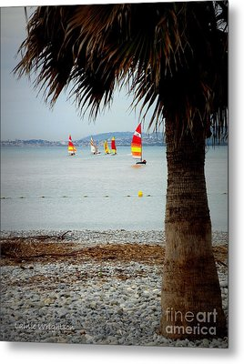 Sailing On A Cloudy Morning Metal Print by Lainie Wrightson