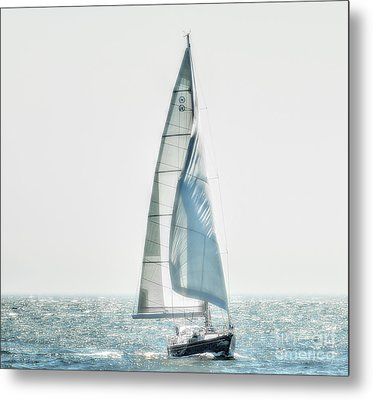 Sailing Metal Print by Raymond Earley