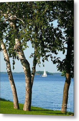 Sailing The Lake Metal Print by Jeanne  Woods