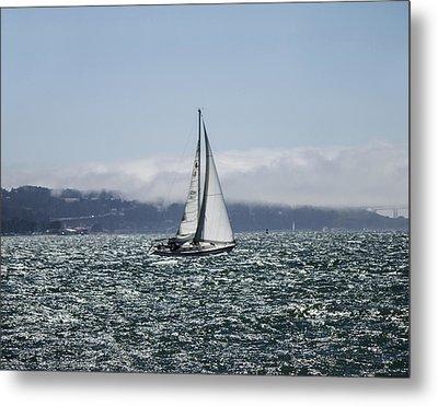 Sailing The Sf Bay Metal Print