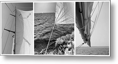 Sailing Three Panel Metal Print by Tony Grider