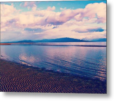 Metal Print featuring the photograph Sailor's Delight by Marilyn Wilson