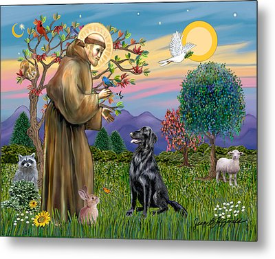 Metal Print featuring the digital art Saint Francis Blesses A Flat Coated Retriever by Jean B Fitzgerald