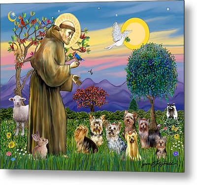 Metal Print featuring the digital art Saint Francis Blesses Seven Yorkies by Jean Fitzgerald